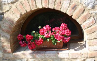 Villa Chianti 1 Impressionen 07