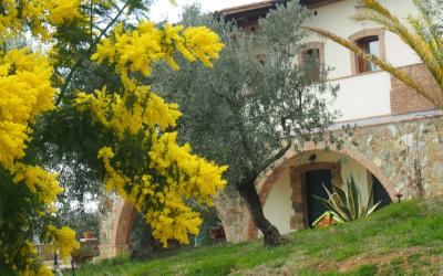 Villa Follonica Außenansichten 06