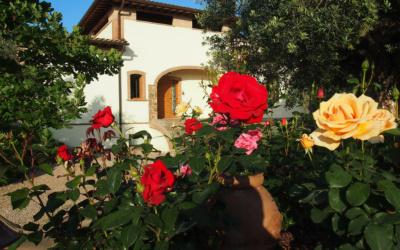 Villa Follonica Außenansichten 07