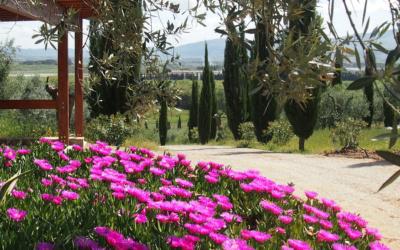 Villa Follonica Impressionen 11