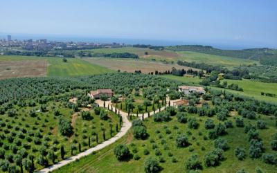 Villa Follonica Impressionen 17