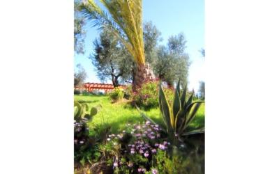 Villa Follonica Impressionen 31