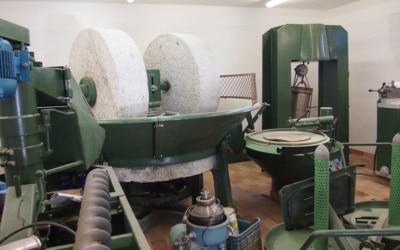 Villa Follonica Olivenöl Mühle 02