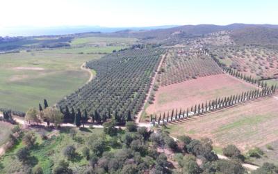 Villa Follonica Panorama 04