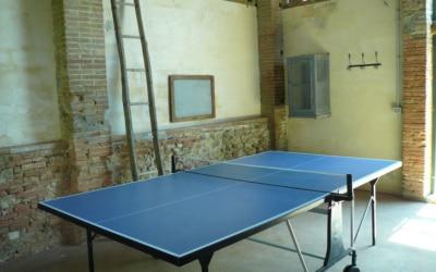 Villa Marti 2 Tischtennis 02