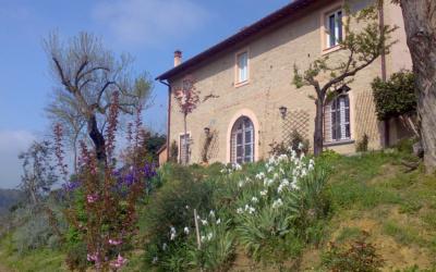 Villa Marti 3 Außenansicht 01