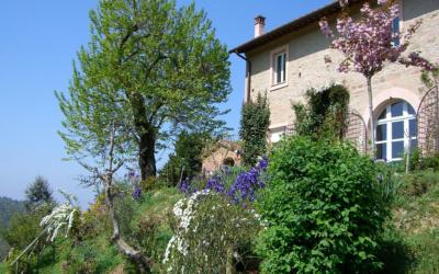 Villa Marti 3 Außenansicht 02