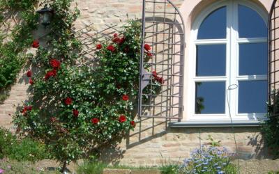 Villa Marti 3 Außenansicht 08