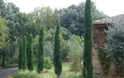 Villa Marti 3 Außenansicht 12