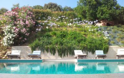 Villa Marti 3 Pool 05