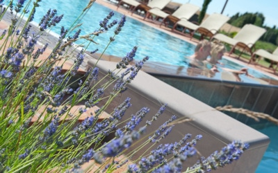 Villa Peccioli 5 Pool 08