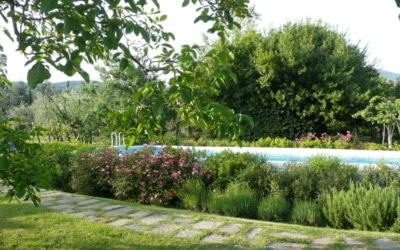 Villa Sesto Fiorentino (14)