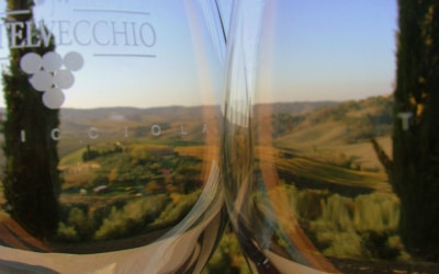 Weingut Terricciola 6 Impressionen 11