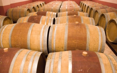 Weingut Terricciola 6 Impressionen 13