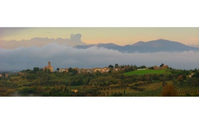 Weingut Terricciola 6 Panorama 01