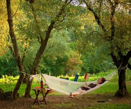Relax zwischen den Olivenbäumen imAgriturismo Serravalle.