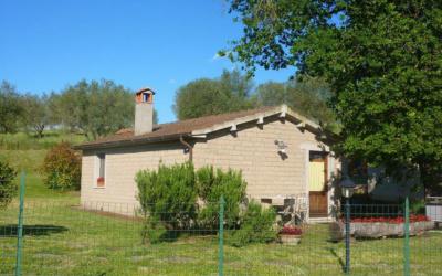 Ferienhaus Pitigliano 2 (31)