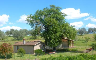 Ferienhaus Pitigliano 2 (39)