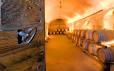 Urlaub auf dem Weingut in der Toskana für Weinliebhaber