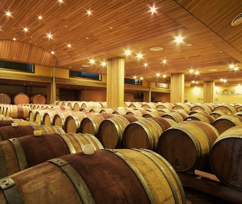 Urlaub im Weingut: Barrique-Keller im Landgut Terricciola