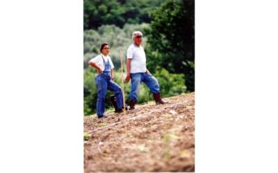 Agriturismo Serravalle (15)