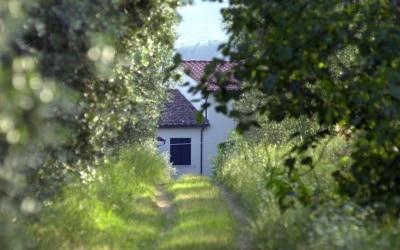 Agriturismo Serravalle
