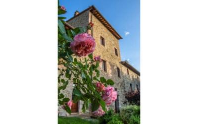 Burg Castiglione (8)