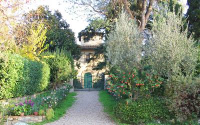 Kochkurs in der Renaissance Villa (14)