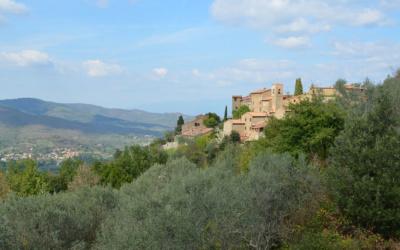Weinlese in der Toskana (27)