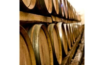 Weinprobe in der Burg (2)