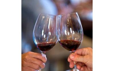 Weinprobe in der Burg (24)