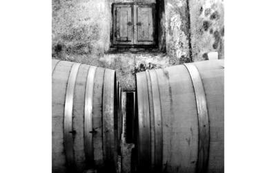 Weinprobe in der Burg (4)