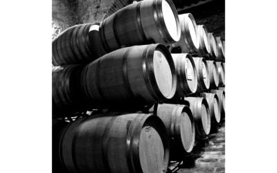 Weinprobe in der Burg (5)