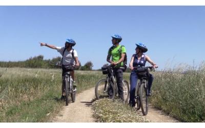 geführte Fahrradtouren durch die Toskana (6)