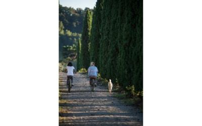 mit Fahhrädern durch die Toskana (3)