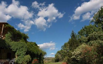 Bio Agriturismo Pomarance 2 (33)