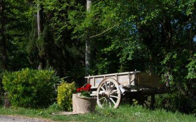 Bio Agriturismo Pomarance 2 (55)