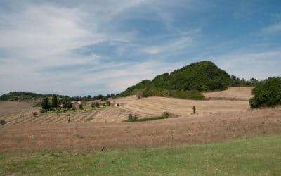 Bio Agriturismo Pomarance 3 (10)