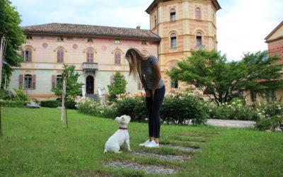 Villa_Comano_(2)