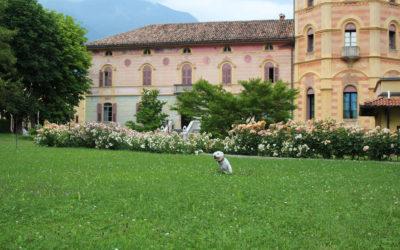Villa_Comano_(3)
