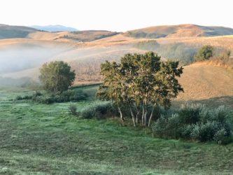 Ferienhaus In Toscana - Morgenstunde