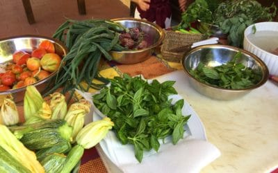 Bio-Kochkurs 12~ Gemüse aus dem eigenen Bio-Gemüsegarten