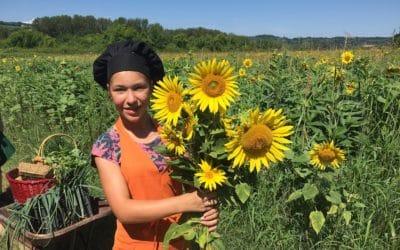 Bio-Kochkurs 8 ~ Sonnenblumen im Bio-Gemüsegarten