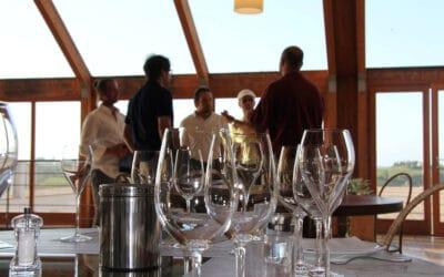 Tennisurlaub Toskana, Weinprobe (25)