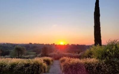 Landgut Terricciola Sonnenuntergang (1)
