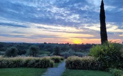 Landgut Terricciola Sonnenuntergang (2)