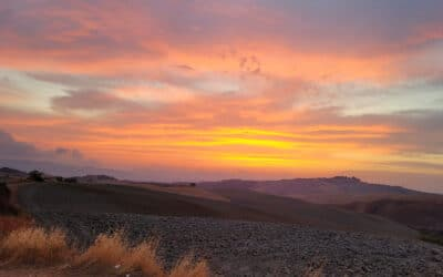 Landgut Terricciola Sonnenuntergang (4)