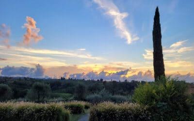 Landgut Terricciola Sonnenuntergang (5)